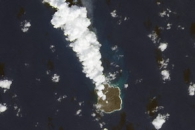 New Island Turns One, Continues Growing