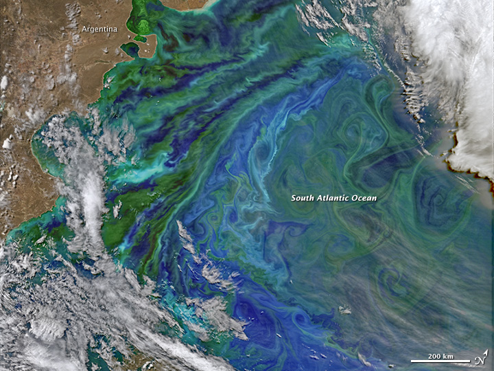 Colorful and Plankton-full Patagonian Waters