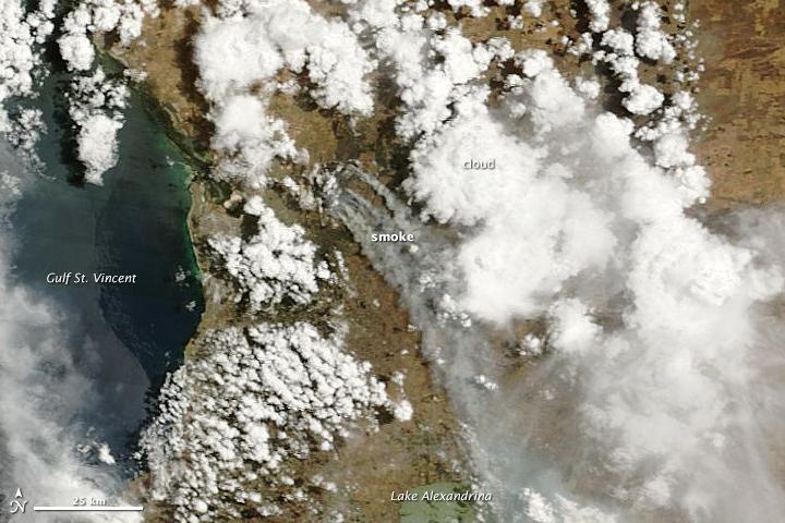 Adelaide Hills Bushfire