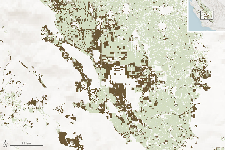 Satellites Spot Fields Idled by Drought - related image preview