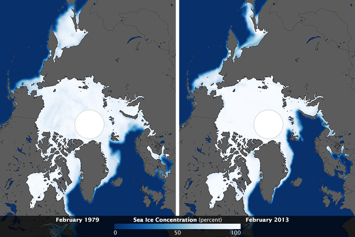 Despite Antarctic Gains, Global Sea Ice Is Shrinking - related image preview