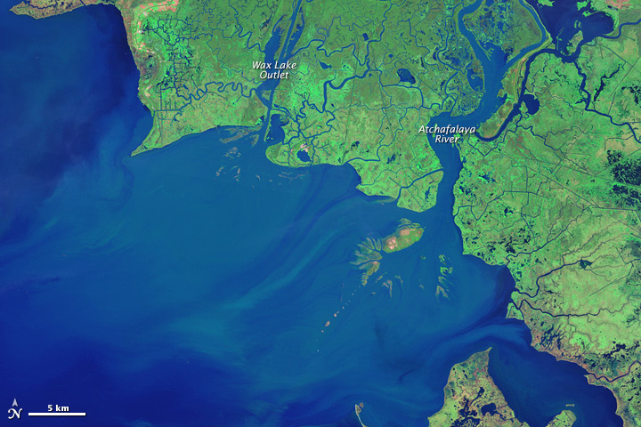 New Land on the Louisiana Coast