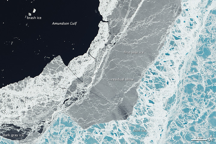 On the Edge of Ice in the Amundsen Gulf