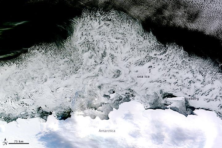 Sea Ice off the Princess Astrid Coast