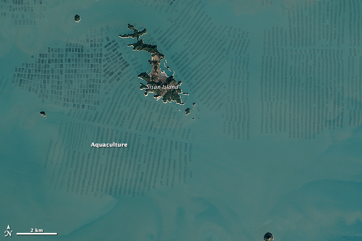 Seaweed Farms in South Korea