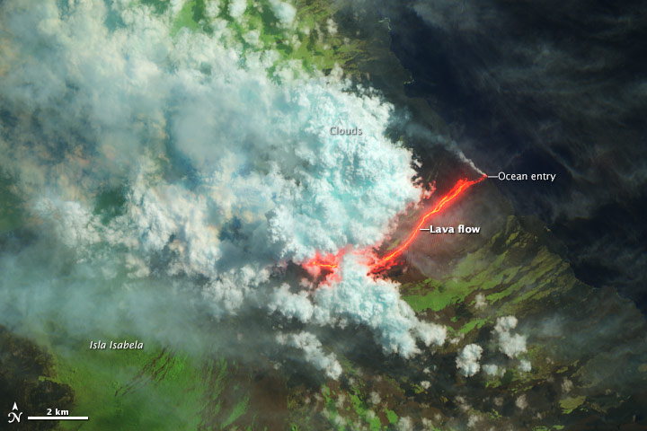 Wolf Volcano Erupts - related image preview