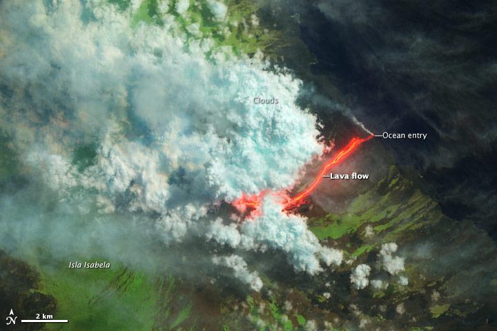 Wolf Volcano Erupts