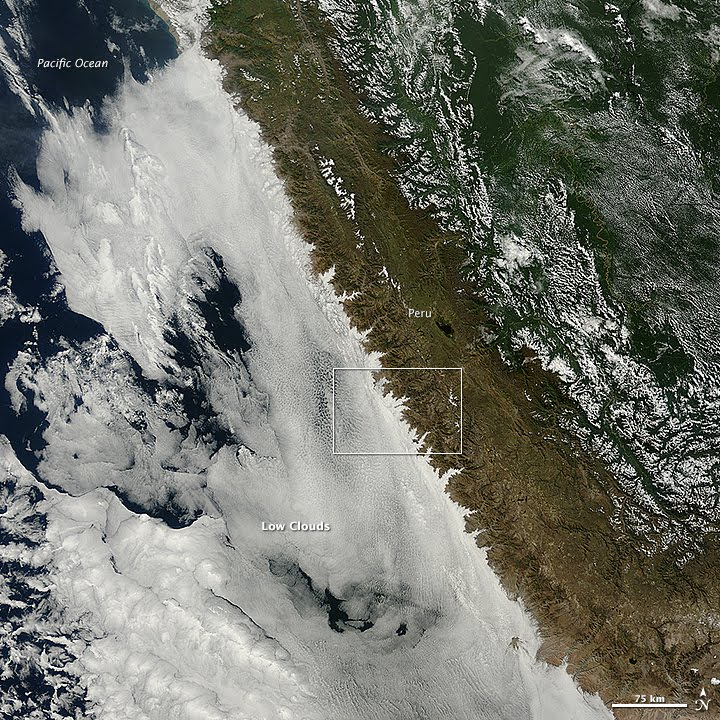 At the Intersection of Coastal Peru and a Cloud Bank - related image preview