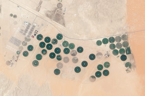 Todhia Arable Farm in Saudi Arabia