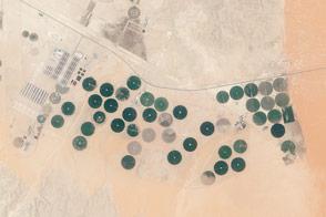 Todhia Arable Farm in Saudi Arabia