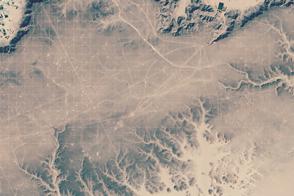 Seismic Surveying Grid in Libya