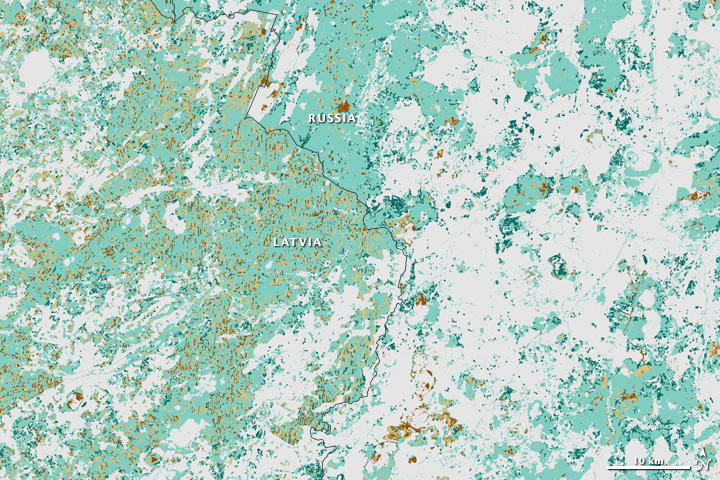 Changing Forest Cover Since the Soviet Era