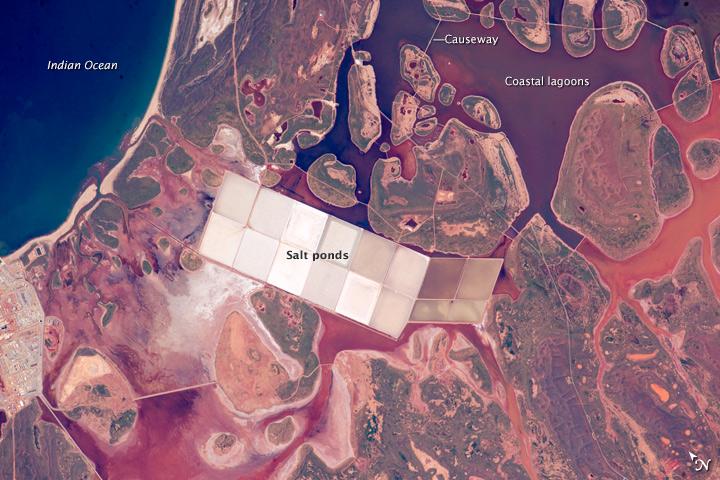 Salt Ponds and Coastal Flats, Western Australia