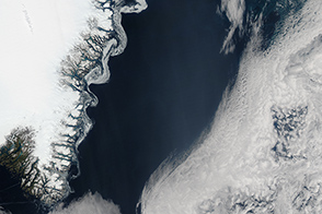 Swirling Sea Ice in the Greenland Sea