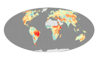 Longer, More Frequent Fire Seasons