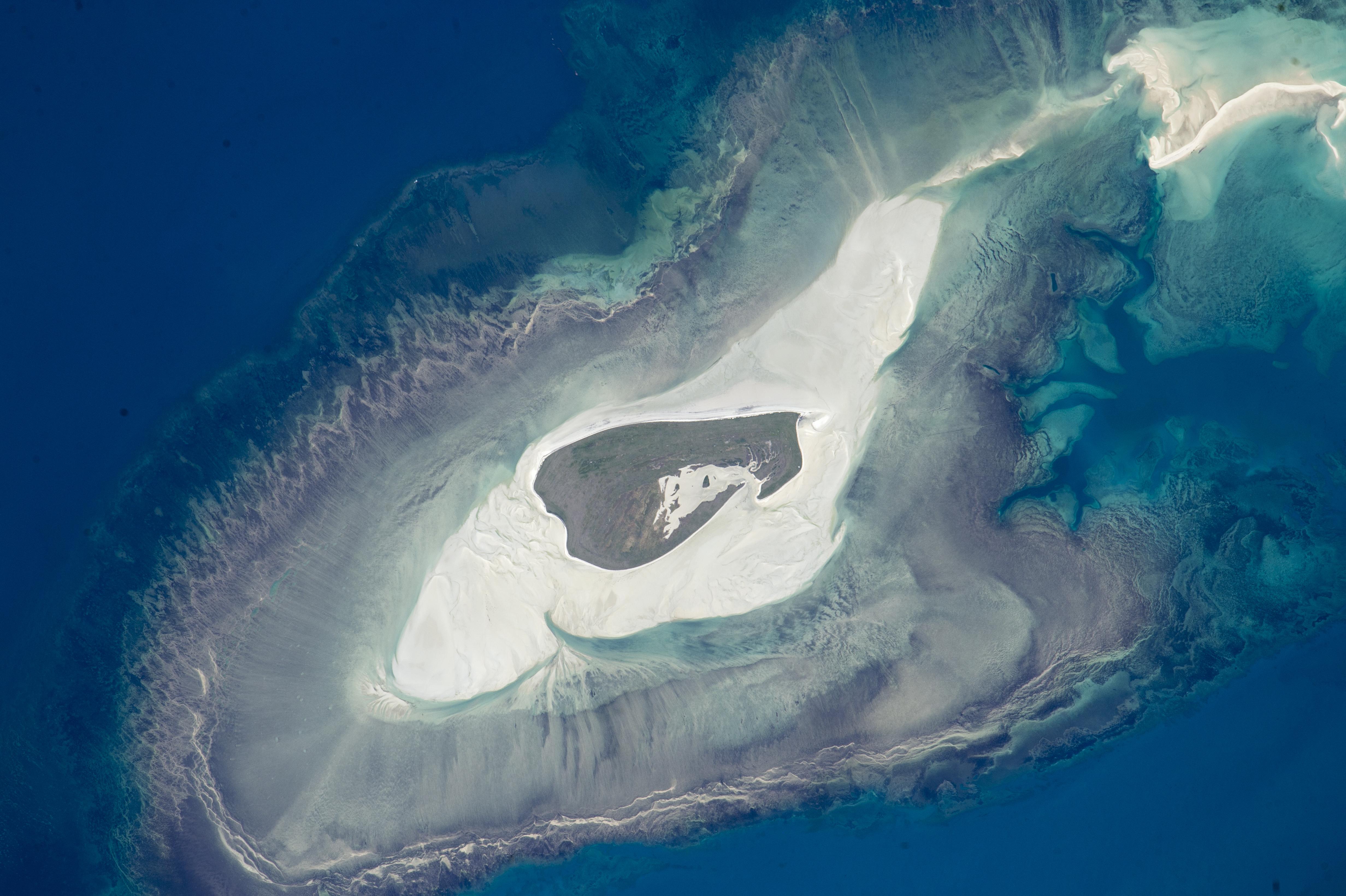 Adele Island : Image of the Day