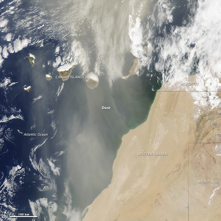 Dust Storm off Western Sahara