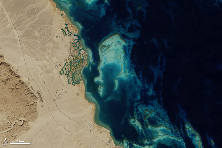 Establishing El Gouna - related image preview
