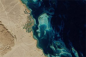 Establishing El Gouna - selected image