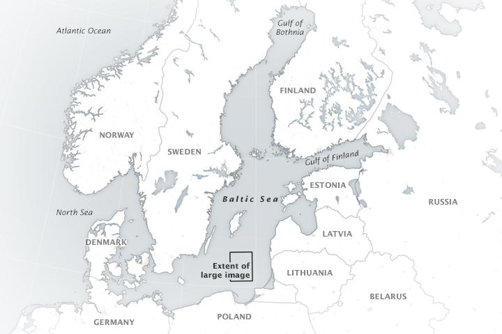 Blooming Baltic Sea