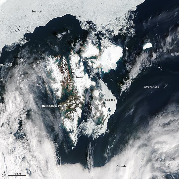 Using Satellites to Study Svalbard's Growing Season