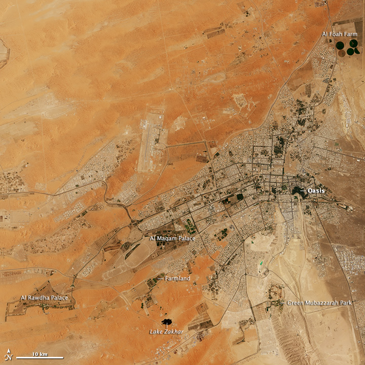 The Greening of Al Ain