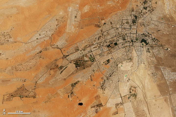The Greening of Al Ain - related image preview