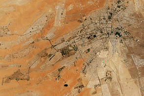 The Greening of Al Ain - selected image