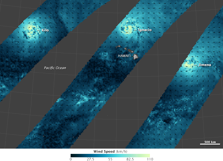 Wind Fields of a Tropical Cyclone Trio