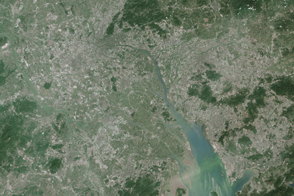 The World's Largest Urban Area - selected image