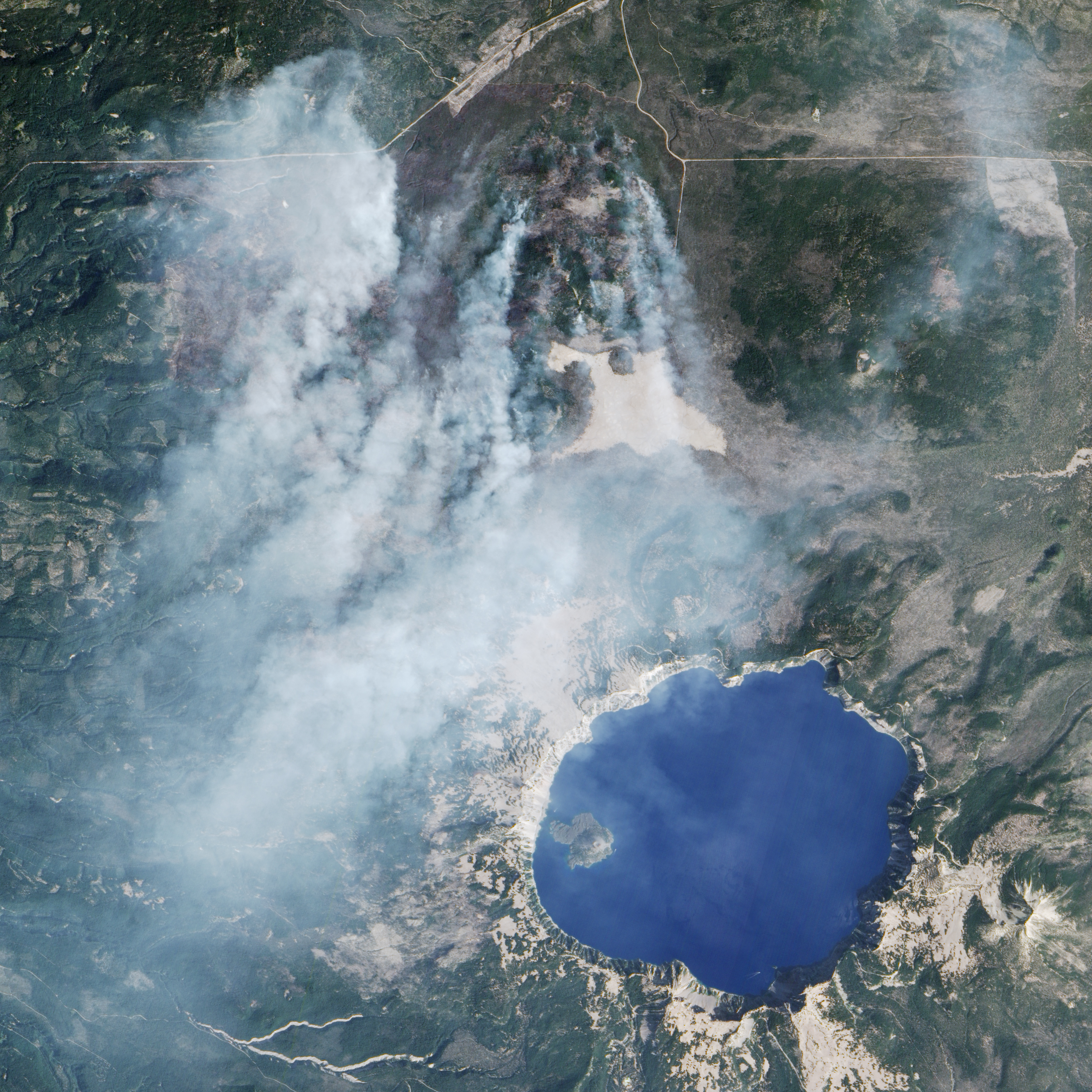 Wildfire Chars Forest Near Crater Lake - related image preview