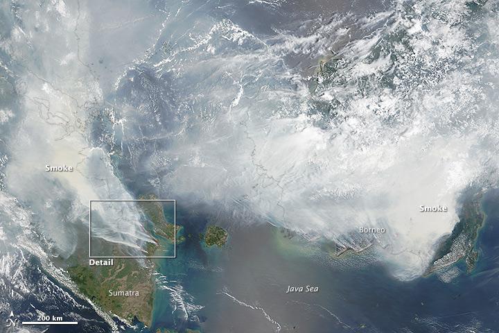 Zábery na Borneo zo satelitov NASA. FOTO - http://earthobservatory.nasa.gov/IOTD/view.php?id=86681