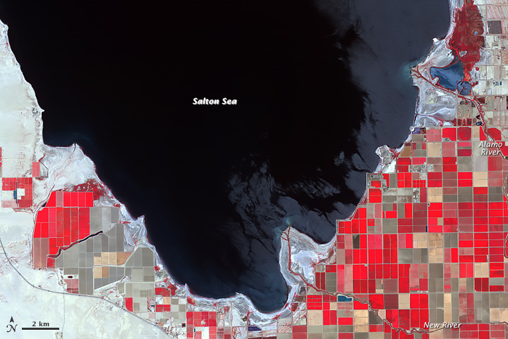 Shrinking Shoreline of the Salton Sea  - related image preview