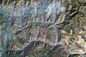 Grizzly Bear Complex Fire  - selected image