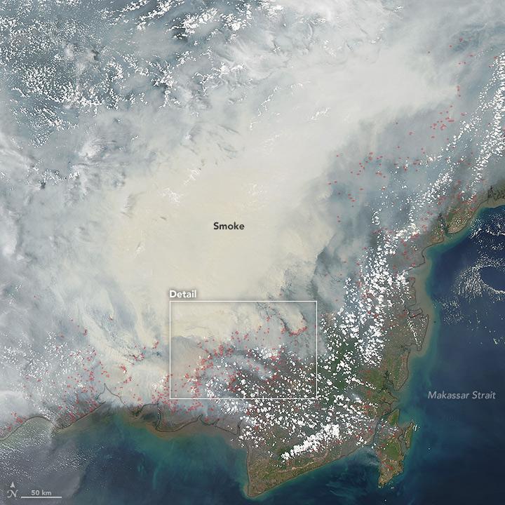 Asap Tebal Selimuti Kalimantan