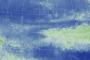 El Niño Disrupts the Marine Food Web