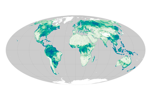 Soil Moisture Around the World - selected image