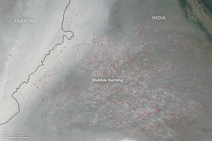 Stubble Burning in Punjab, India - related image preview