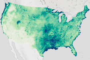 Soil Moisture in the United States - selected image
