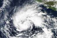 Tropical Storm Sandra
