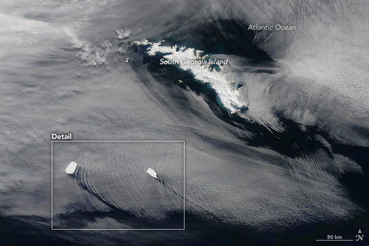 Icebergs Make Waves off South Georgia Island