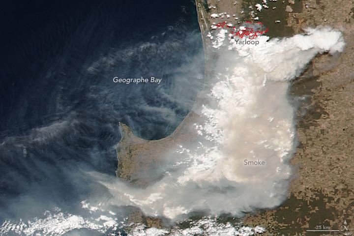 Bushfire Devastates Australian Town