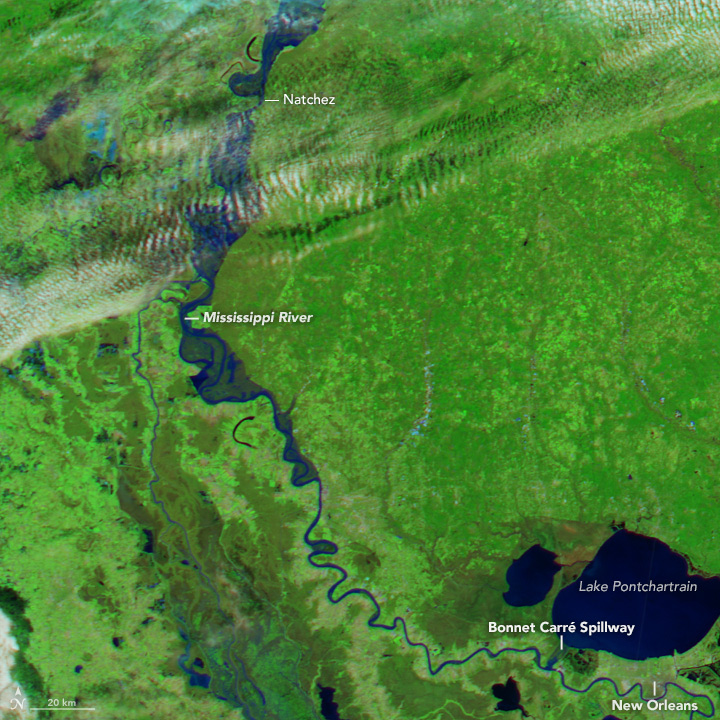 Flooding on the Lower Mississippi