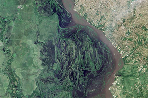 El Niño Fueled Rains Swamp South America - selected image