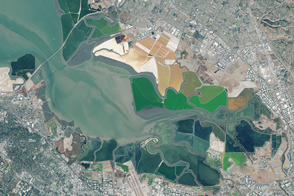 From Salt Production to Salt Marsh - selected image