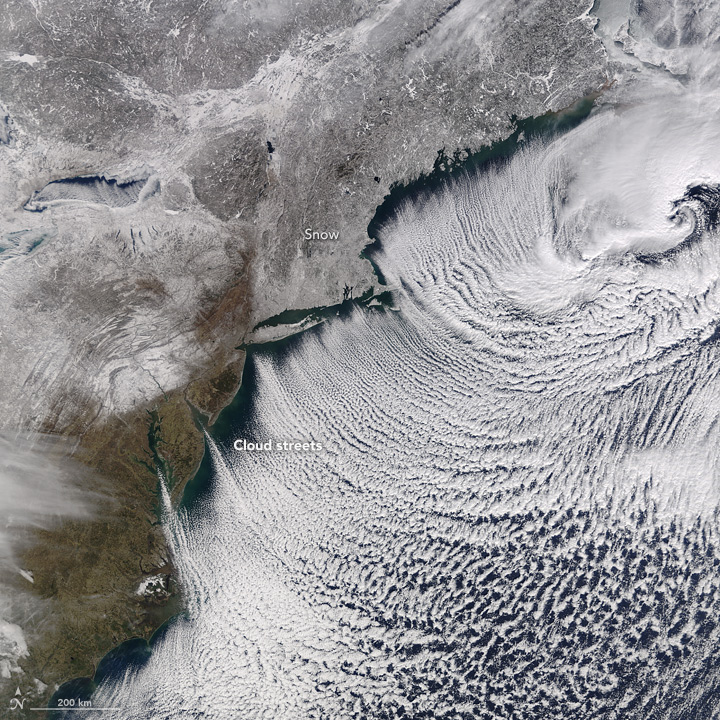 Cloud Streets Trace Cold Coastal Winds