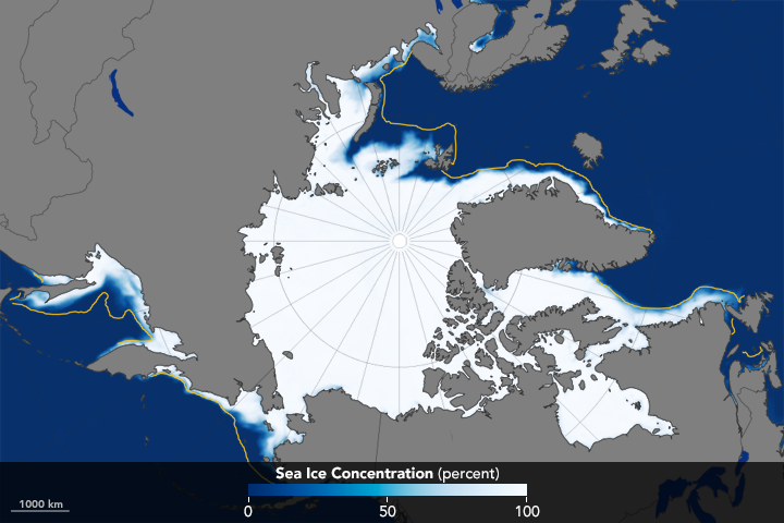Leisurely January Growth for Arctic Sea Ice  - related image preview