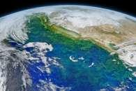 California Coastal Current
