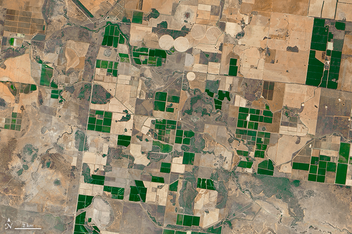 Agriculture in Southeast Australia - related image preview