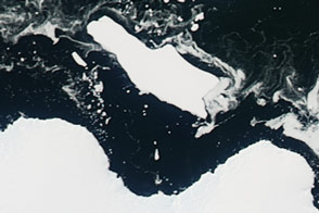 Antarctic Berg Shifts, Sea ice Responds